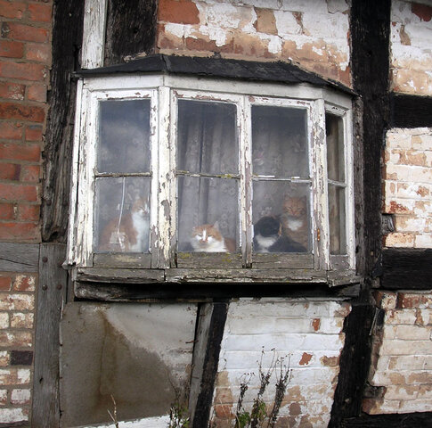 Haunted Old Crow Cottage In Willersley Herefordshire