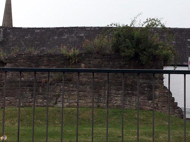 Hereford City Walls 1.jpg