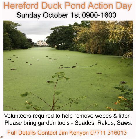 Community Action Day.jpg