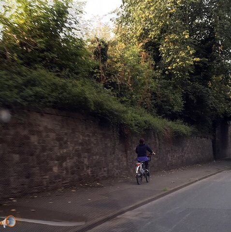 Belmont Road Cyclist.jpg